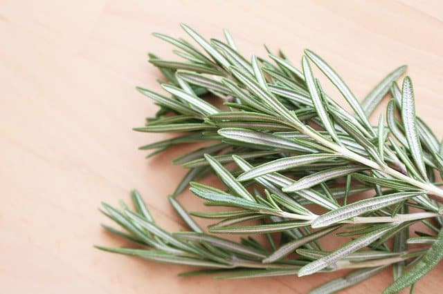 how to grow rosemary in containers