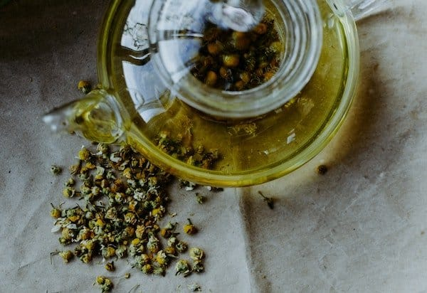 how to grow chamomile in pots to make tea in a glass kettle