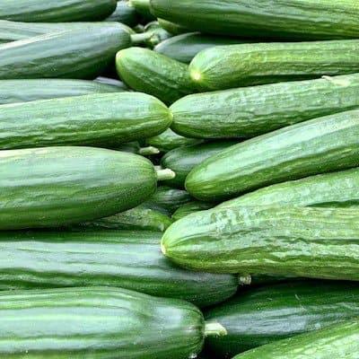 Dark green slicing cucumbers - how to grow in container garden