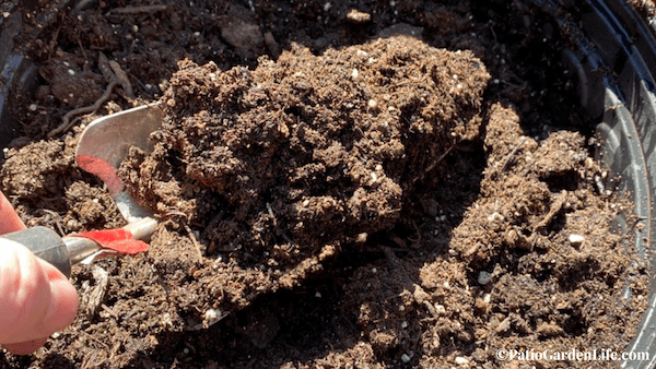 Potting soil in a container garden