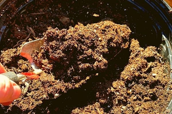 Red trowel scooping potting soil out of a black container