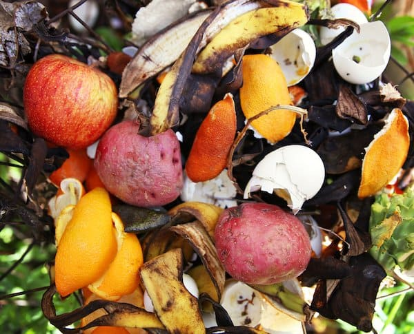 Compost 101 for container gardens