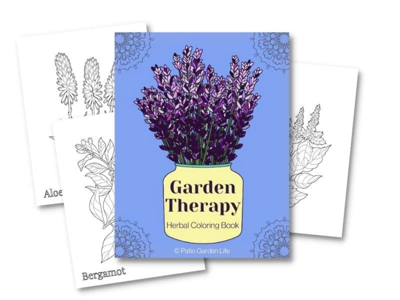 Preview of cover and three sample pages from Garden Therapy herbal coloring book